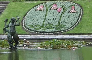 Linnea - Smålands landskapsblomma (Plantering i Göteborgs botaniska trädgård 2007)